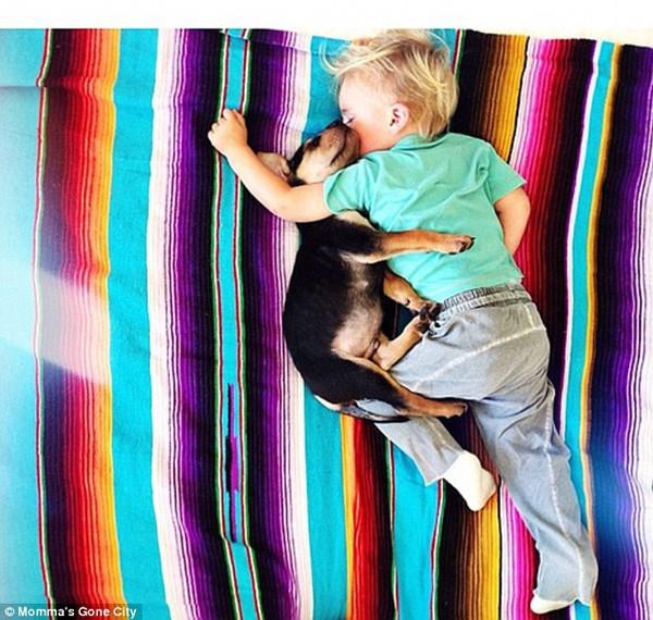 Chùm ảnh siêu dễ thương khi bé ngủ cùng cún con 8