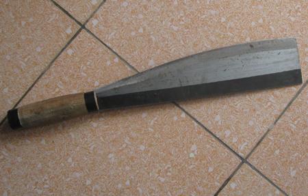 Nghi ngờ chuyện gối chăn, kẻ cuồng ghen vác dao chém vợ đến chết 1