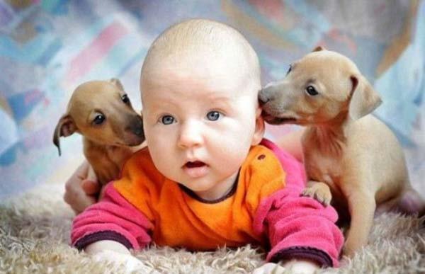 Chùm ảnh cực đáng yêu và hài hước về bé với cún con 9