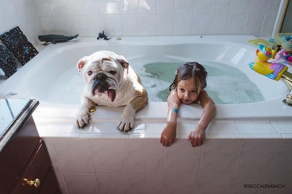 Tình bạn cực đáng yêu giữa cô bé 4 tuổi và chó cưng 4