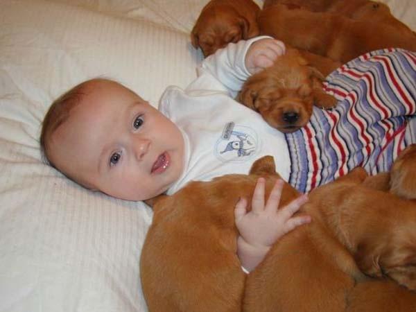 Chùm ảnh cực đáng yêu và hài hước về bé với cún con 8