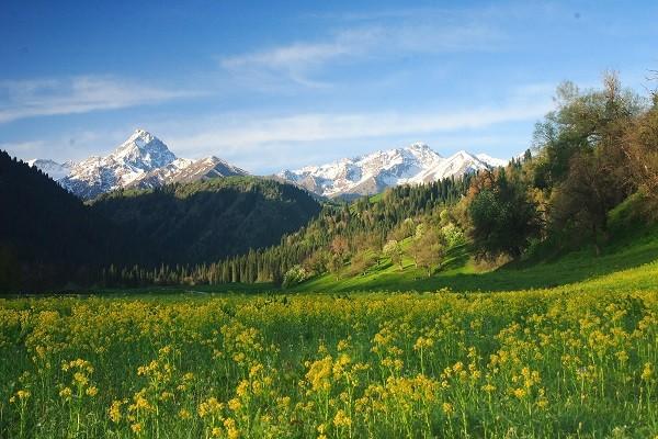 """Ngắm những thảo nguyên xanh """"bất tận"""" trên khắp thế giới 3"""