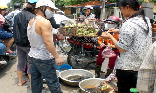 Chợ đồ ôi buổi trưa dành cho công nhân 2