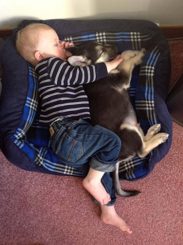 Chùm ảnh cực đáng yêu và hài hước về bé với cún con 10