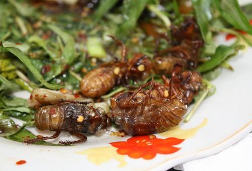 4 loại ấu trùng mê hoặc thực khách Việt 7