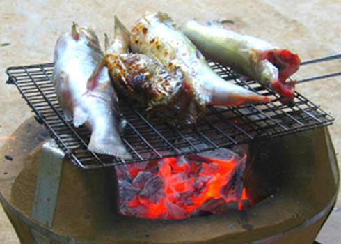 20 loại cá nướng thơm ngon (2) 4