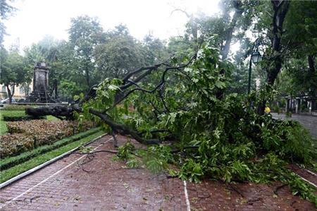 Hà Nội xáo trộn vì bão Haiyan 5