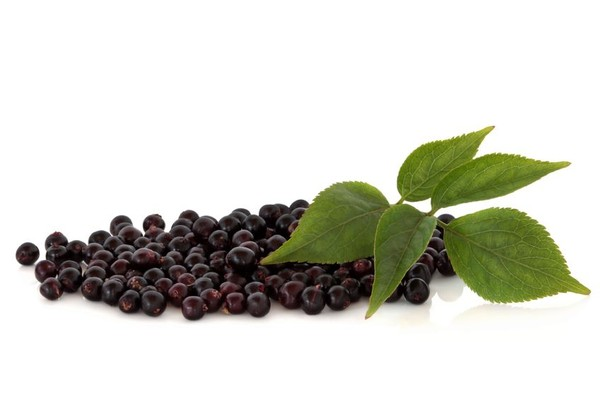9 loại trái cây có công dụng phòng ngừa nhiều bệnh 4