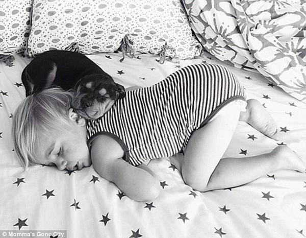 Chùm ảnh siêu dễ thương khi bé ngủ cùng cún con 5