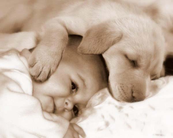 Chùm ảnh cực đáng yêu và hài hước về bé với cún con 13