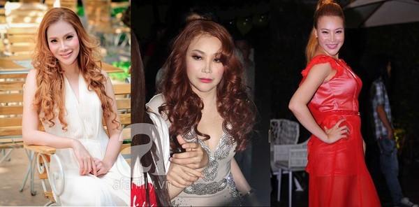 Những sao Việt già đi nhanh chóng sau nghi án thẩm mỹ 18