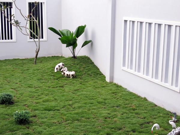 Chiêm ngưỡng biệt thự 320m² sang trọng ở Biên Hoà - Đồng Nai 16