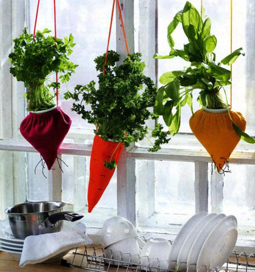 Tự làm vườn treo trồng rau trong bếp 13