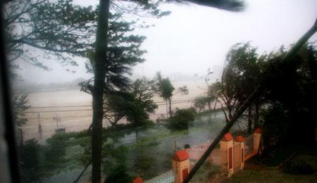 Bão số 11 tấn công: Biển Mỹ Khê dậy sóng dữ dội 1