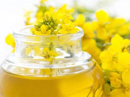 Vitamin E trong dầu thực vật gây viêm phổi, hen suyễn 1