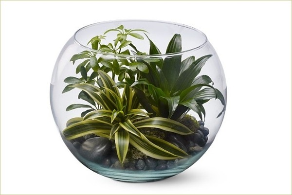 6 cách cắm hoa đẹp trong bình cá tròn 5