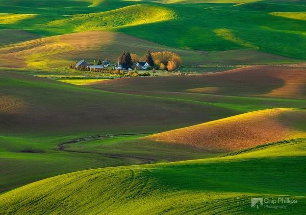 """Ngắm những thảo nguyên xanh """"bất tận"""" trên khắp thế giới 14"""