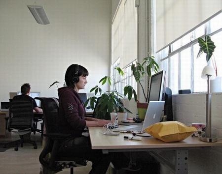 Ngồi làm việc gần cửa sổ sẽ tăng gấp đôi sự tỉnh táo 1