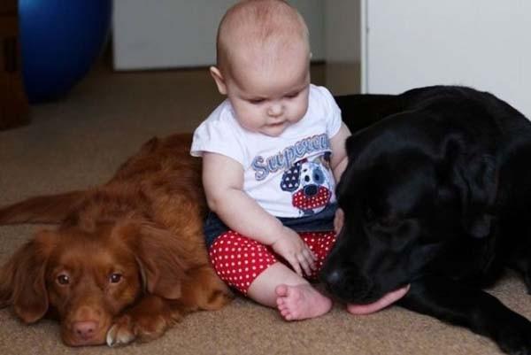 Chùm ảnh cực đáng yêu và hài hước về bé với cún con 4