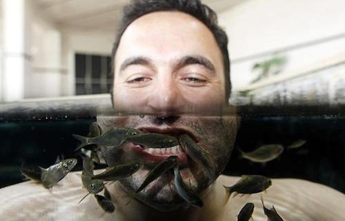 Sởn gai ốc mốt chữa bệnh, làm đẹp bằng động vật 4