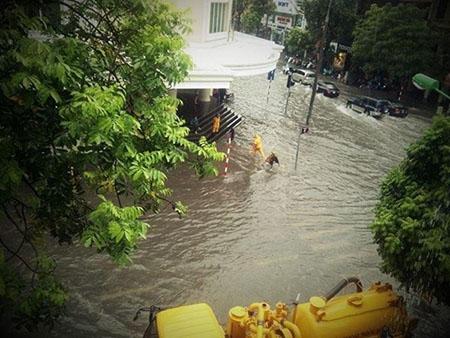 Phố cổ Hà Nội 'thành sông' sau mưa lớn 4