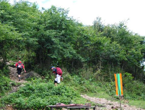 Thí sinh 'Cuộc đua kỳ thú' mếu máo trên đỉnh Fansipan 1