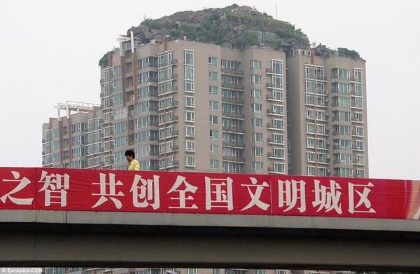 """Cận cảnh núi """"mọc"""" trên nóc tòa nhà cao 26 tầng 6"""