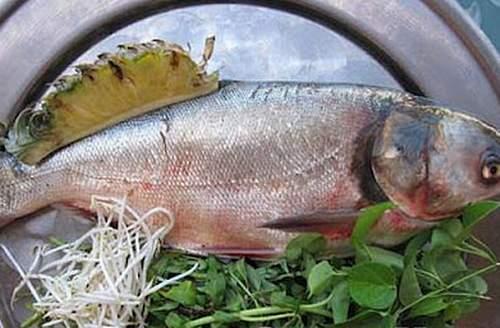 Công dụng chữa bệnh tuyệt vời của cá mè 1