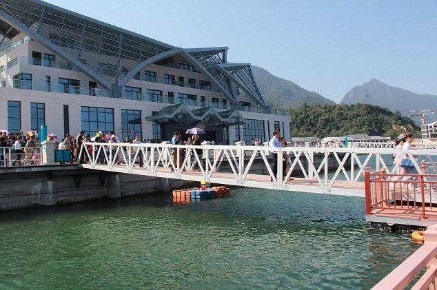 Choáng với cảnh chen chúc dẫn đến sập cầu ở Trung Quốc 9