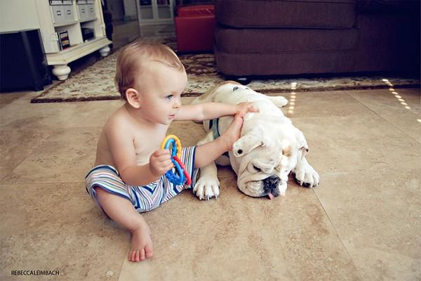 Tình bạn cực đáng yêu giữa cô bé 4 tuổi và chó cưng 15