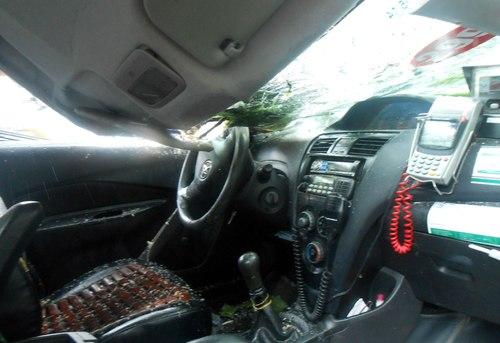 Cây cổ thụ gãy đè taxi, tài xế thoát chết 2
