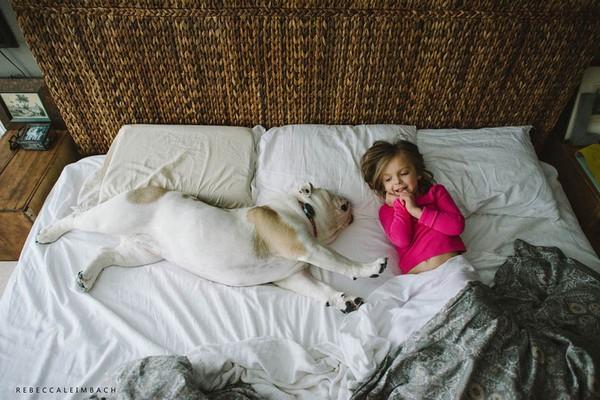 Tình bạn cực đáng yêu giữa cô bé 4 tuổi và chó cưng 8